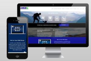DS3 Website Home